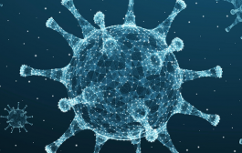 Nova lei obriga hospitais a informarem dados sobre coronavírus referentes aos profissionais de saúde
